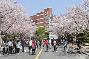 Kinh nghiệm giúp bạn lựa chọn ngành nghề đi du học Hàn Quốc